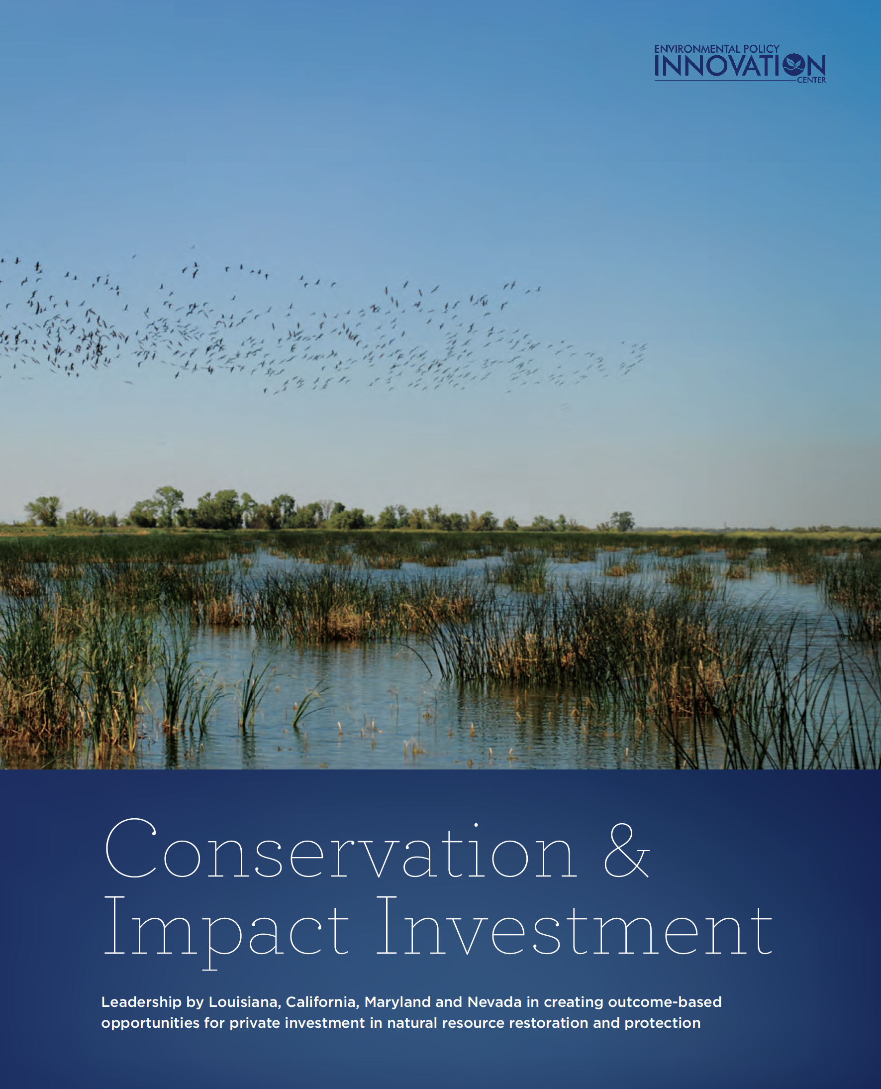 Conservation And Impact Investment Cover
