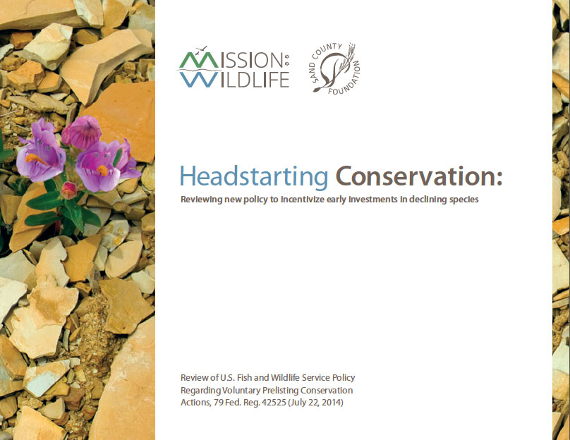 Headstart Conservation Cover